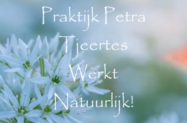 video_ppt